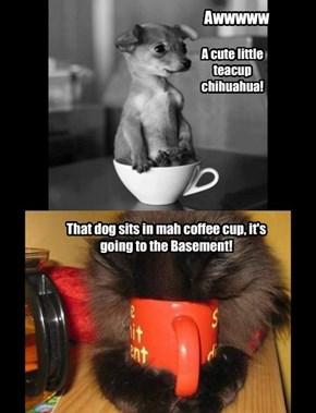 No coffee    no awwww