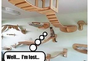 Who built this place,  M.C. Escher?