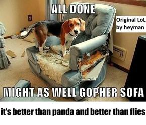 it's better than panda and better than flies