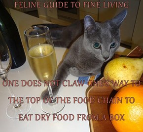 FELINE GUIDE TO FINE LIVING  ONE DOES NOT CLAW ONE'S WAY TO THE TOP OF THE FOOD CHAIN TO EAT DRY FOOD FROM A BOX