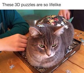 Do You Feline A Puzzle?