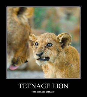 TEENAGE LION