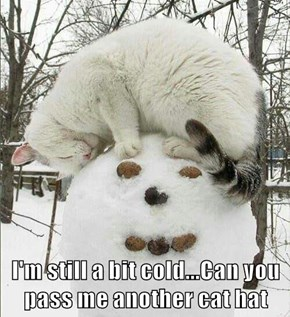 I'm still a bit cold...Can you pass me another cat hat