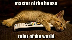 master of the house  ruler of the world