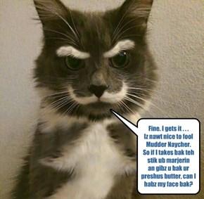My ***normal*** face, cuz iz nawt nice to fool kitteh, eether!