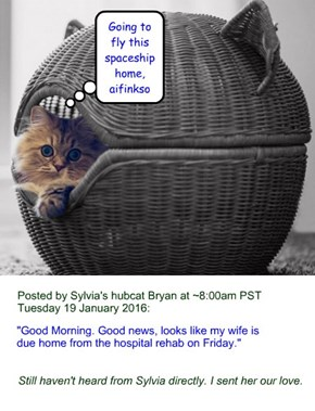 Sylvia's hubcat Bryan's Tuesday 19 Jan 2016 Facebook update