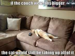 if the couch were any bigger  the cat would still be taking up all of it