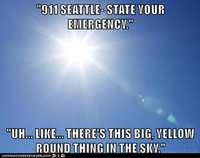 """911 SEATTLE- STATE YOUR EMERGENCY.""  ""UH... LIKE... THERE'S THIS BIG, YELLOW ROUND THING IN THE SKY."""