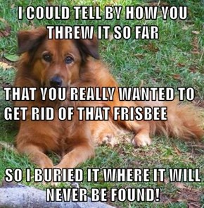 I COULD TELL BY HOW YOU THREW IT SO FAR THAT YOU REALLY WANTED TO GET RID OF THAT FRISBEE SO I BURIED IT WHERE IT WILL NEVER BE FOUND!