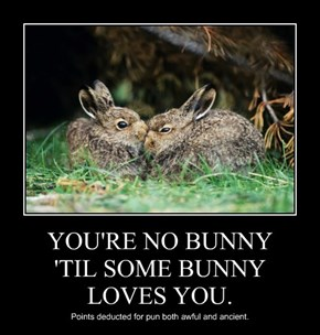 YOU'RE NO BUNNY 'TIL SOME BUNNY LOVES YOU.