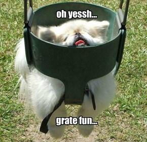 oh yessh...         grate fun...