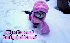 OK , so it snowed. Can I go inside now?