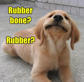 Rubber bone?  Rubber?