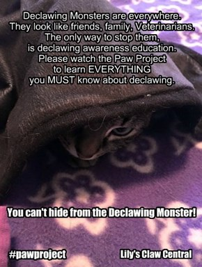 Declawing Monsters!