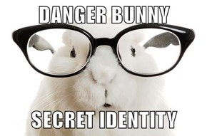 DANGER BUNNY  SECRET IDENTITY