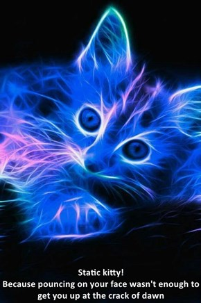 Static kitty!                                                                            Because pouncing on your face wasn't enough to get you up at the crack of dawn