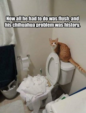 Now all he had to do was flush, and his chihuahua problem was history.