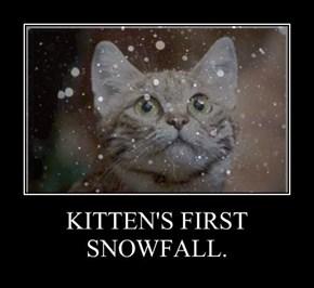 KITTEN'S FIRST SNOWFALL.