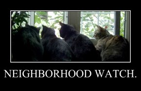 NEIGHBORHOOD WATCH.