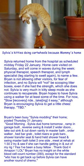 Home Sweet Home: Sylvia update Sunday 24 January 2016