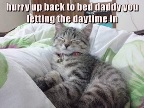 hurry up back to bed daddy you letting the daytime in