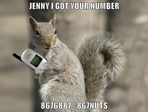 JENNY I GOT YOUR NUMBER  8676887 - 867NUTS