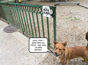 "Imagine How You Would Feel If You Saw A "" No Humans"" Sign In The Park."
