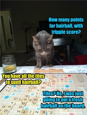 I Can't Believe My Cat Is Beating Me At Scrabble!
