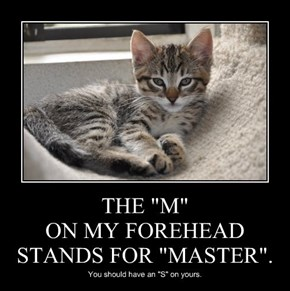 """THE """"M"""" ON MY FOREHEAD STANDS FOR """"MASTER""""."""