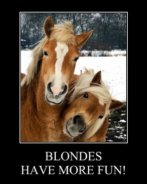 BLONDES HAVE MORE FUN!