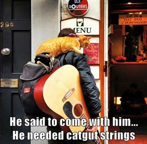 He said to come with him...   He needed catgut strings