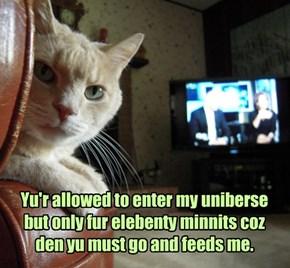 Yur house is really kitteh's uniberse!