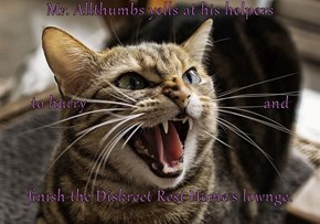 Mr. Allthumbs yells at his helpers to hurry                                          and finish the Diskreet Rest Home's lownge.