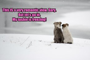 Snow is why romance typically blooms in spring