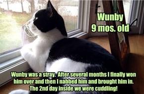 Allcat's kitteh Wunby