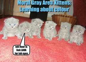 Moral Gray Area Kittens:  Learning about colour