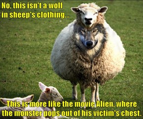 No, this isn't a wolf                                                                                 in sheep's clothing...  This is more like the movie Alien, where the monster pops out of his victim's chest.