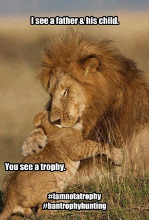 I am not a trophy