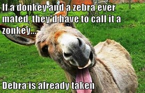 If a donkey and a zebra ever mated, they'd have to call it a zonkey...  Debra is already taken