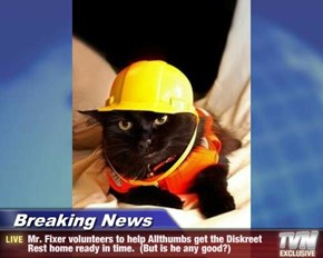 Breaking News - Mr. Fixer volunteers to help Allthumbs get the Diskreet Rest home ready in time.  (But is he any good?)