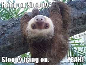 Hang on Sloopy,  Sloopy hang on.              YEAH!