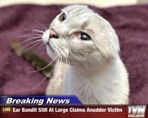 Breaking News - Ear Bandit Still At Large Claims Anudder Victim