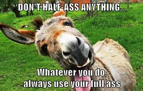 DON'T HALF-ASS ANYTHING...  Whatever you do,                              always use your full ass