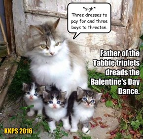 Father of the Tabbie triplets dreads the Balentine's Day Dance.