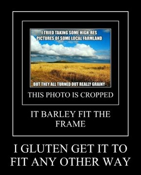 I GLUTEN GET IT TO FIT ANY OTHER WAY