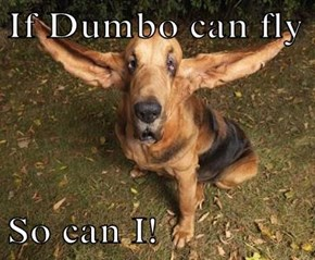 If Dumbo can fly  So can I!