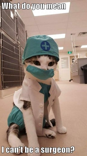What do you mean  I can't be a surgeon?