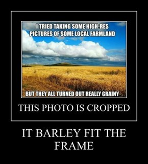 IT BARLEY FIT THE FRAME