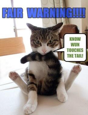 FAIR  WARNING!!!!