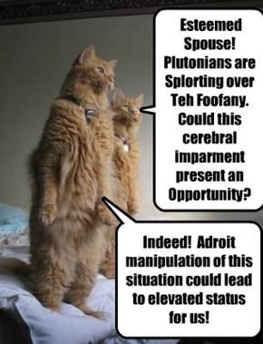 A plan!  A Cunning Plan!